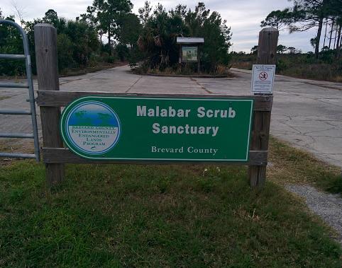 Malabar11